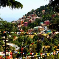 Dharamsala, Himachal Pradesh, India. peace. monks. merchants. hippies. Tibet. rain. cold. coolness