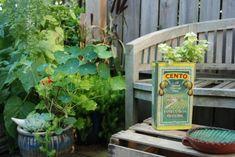 Repurposed Garden Planters: Recycling Ideas for Indoor and Outdoor Gardens Indoor Planters, Diy Planters, Garden Planters, Recycled Planters, Outdoor Gardens, Indoor Outdoor, Big Backyard, Home Garden Plants, House Plants