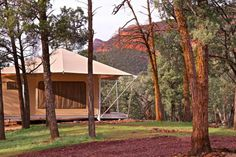 Our Deluxe Eco Tent located at Wilpena Pound, Ikara Flinders Ranges National Park . Luxury Glamping, Luxury Tents, Australia Tourism, South Australia, Tent Sale, Campsite, Swimming Pools, Gazebo, Ranges