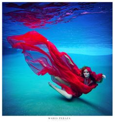 Red Bird in the water. #red #underwater #beauty #creative #photography #inspiration