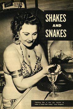 Tangar gives snake drinks 1955