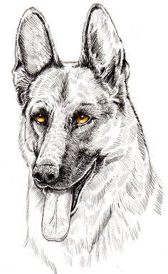 Dog illustrations on Behance