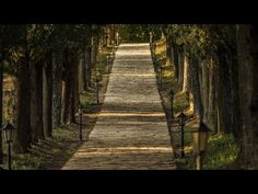 EXPANSION & ALIGNMENT PT 3 ☆   PATH OF LEAST RESISTANCE | Abraham Hicks 2015 ペ Thinking thoughts to curve out your Path -