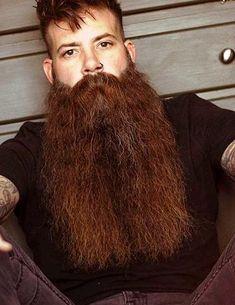 Beard No Mustache, Moustache, Beard Styles For Men, Hair And Beard Styles, Long Hair Styles, Grey Beards, Long Beards, Epic Beard, Moda Masculina
