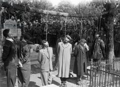 Execution of hostages by the Waffen SS and Wehrmacht, Pancevo, Serbia, 1941 (b/w photo)