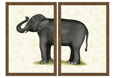 Maybe even the new guest room?I like it for George too.Elephant Diptych on OneKingsLane.com