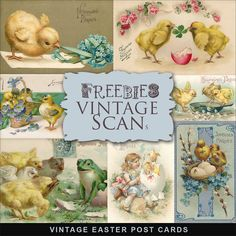 Free freebie printable vintage Easter postcards chicks, eggs