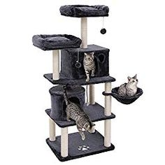 FEANDREA Multi-Level 60 inches Cat Tree with Sisal-Covered Scratching Posts, Plush Perches, Basket and 2 Condos, Cat Tower Furniture - for Kittens, Cats and Pets - Smoky Gray Cat Tree Condo, Cat Condo, Cat Scratching Tree, Sisal Rope, Sisal Twine, Cat Towers, Niches, Cat Furniture, Cute Kittens