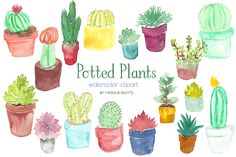 Watercolor Clip Art - Plants by Maria B. Paints on Creative Market