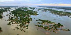 Jeden zweiten Tag eine neue Art: In der Mekong-Region werden viele neue Speizes entdeckt. Doch der Bau von Straßen und Dämmen bedroht das Refugium.