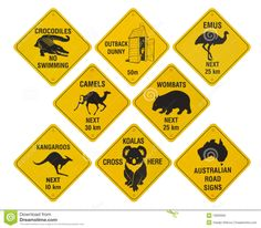 Photo about Many yellow road signs from australia, isolated on white background. Image of sign, echidnas, australian - 10909362 Australian Road Signs, Australian Party, Australian Vintage, Australian Animals, Australia Funny, Australia Map, Australia Crafts, Tattoo Australia, Yellow Road Signs