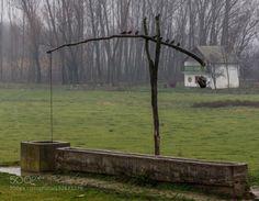 Ten by VladimirG  Lok Serbia field old rain vojvodina well white house VladimirG