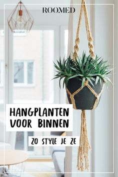 living room ideas – New Ideas Plant Decor, Modern Classic, Plant Hanger, Indoor Plants, Room Inspiration, House Plants, Garden Landscaping, New Homes, Homemade