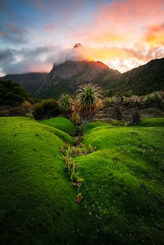 South-West National Park, Tasmania by Chris Wiewiora on 500px