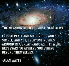Alan Watts oh how I have forgotten about this amazing professor