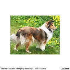 #Sheltie #Shetland #Sheepdog #Painting #Canvas Canvas Print #art #wall #home #decor #dog #pet #doglover