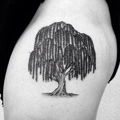 ed20b4ce3 weeping willow tattoos - Google Search Weeping Willow Tattoo, Willow Tree  Tattoos, Tree Tattoo