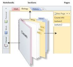 How OneNote is organized