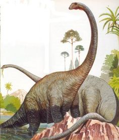 Diplodocus - Google 検索