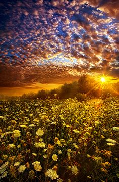 Live Every Moment. Wisconsin Horizons by Phil Koch. | Flickr - Photo Sharing!
