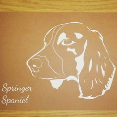 JPIC shows how I can personlised the pictures for you. Any colour any text. #jpic #jld #personalised #personalisedgifts #springerspaniel #spaniel #etsy #order #new #cool #instagram #etsygifts #present #dogs #dog #dogart
