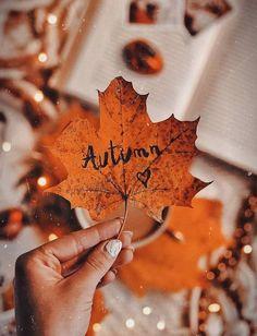 Autumn ♥ Leaves