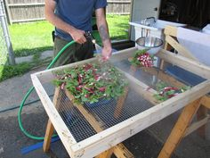produce washing station - Google Search