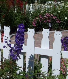 Coastal Maine Botanical Gardens - cat fence in the Children's Garden