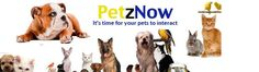 At PetzNow you get the healthiest pet food online. We have a wide range of pet food online supplies for cats, dogs, fishes, reptiles and more. Check out http://petznow.com/ and shop for pet food online from the very comfort of your home and experience our service.