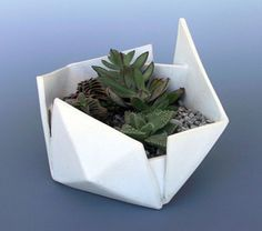 Sculptural Ceramic Planters by Brian Bosworth
