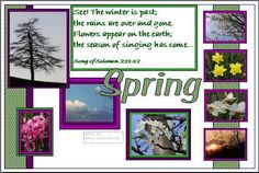 Spring Church Bulletin Board- Pictures from High school student