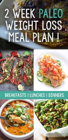 The Paleo Diet has become very popular over the last several years which is why we created a paleo meal plan to lose weight.