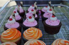 Cupcakes created for farmer's market 2012