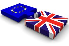 EU Referendum. Should we stay in or out? Find out here: www.thiskoleobasa.com