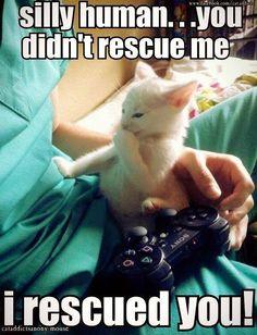 #rescue