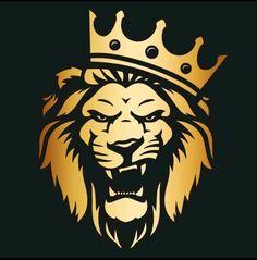 Go hunt your dream 💪 Vector Amor, Crown Png, Lion Photography, Lion King Art, Lion Wallpaper, Lion Logo, Lion Pictures, Yorkie Dogs, Line Tattoos