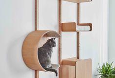 Cat Tree Designs, Cat Wall Furniture, Modern Cat Furniture, Living With Cats, Cat Shelves, Open Shelves, Modular Walls, Cat Scratcher, Cat Room