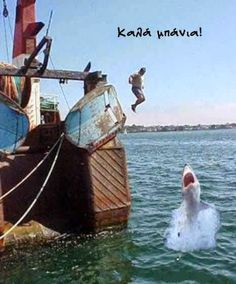 i really hope this is fake.otherwise this person is suicidal and is in possession of an awful imagination. Funny Animal Pictures, Funny Animals, Kill It With Fire, Illusion Pictures, Sailing Ships, Google Images, Illusions, Funny Jokes, Boat