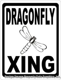 1272 best dragonfly stuff images dragonflies dragonfly decor rh pinterest com