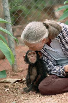 Jane Goodall with baby Chimpanzee, Gombe, Tanzania Primates, Jane Goodall, Animals And Pets, Baby Animals, Cute Animals, Mundo Animal, My Animal, Beautiful Creatures, Animals Beautiful