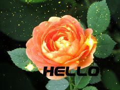 Tisztességes kép jegyzet: Hello