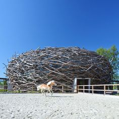 Horse-riding arena in the Czech Republic. [outside]  Designed by SLG Projekt in Prauge.