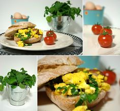 scrambled eggs with watercress and chorizo