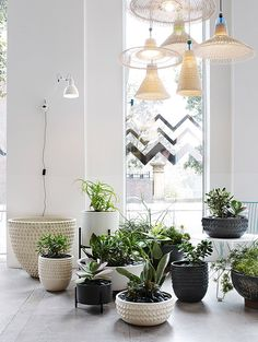 Light + Airy Basket Lighting From PET Lamp