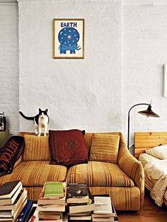 The actress Greta Gerwig has a cat named Paw Newman. (pictured) And Diane Kitten. :)
