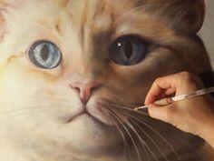 Kate Crosgrove, Pet Portrait Artist