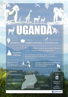 Uganda Country Information infographic. #Africa #Travel