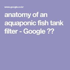 anatomy of an aquaponic fish tank filter - Google 검색