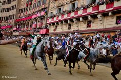 Palio di Siena by Mariano Giannì on 500px