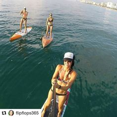 Credit to #flipflops365  ・・・ Beautiful morning paddle with turtles, tarpon, and starfish at Hollywood Beach. Then went over to Dania to snorkel with nurse sharks, fish, a sea turtle, an eel, and a big eagle ray. #bogasup #mermaidlife #ilovemybeach #teamuden #supgirls #supgirl #sup #paddle #boga #bogaboards #bogasup  #jen.hulett  (at The Beautiful Beach Of Hollywood)